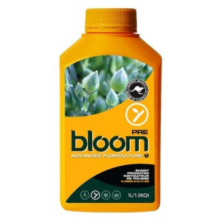BLOOM Pre 1L
