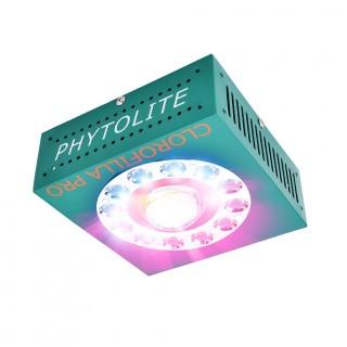 Phytolite Clorofilla CREE 3070 80