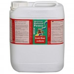 Growth/Bloom Excellarator 5L