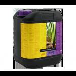 B'cuzz 1-Component Nutrition 5L